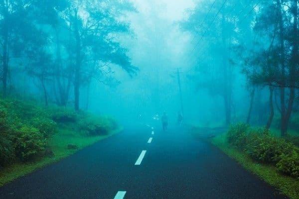 Himachal road